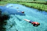 Flutuacao Rio Sucuri