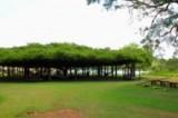 Balneario Praia da Figueira