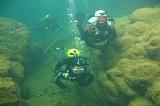 Mergulho Rio Formoso