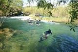 Flutuacao Parque Ecologico do Rio Formoso