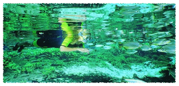 flutuacao Rio da Prata
